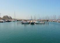 The Baltimore-Ashkelon Partnership Nav Image