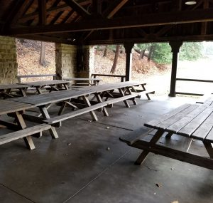 Jewish Overnight Camps to Offer Different Summer Experience Image