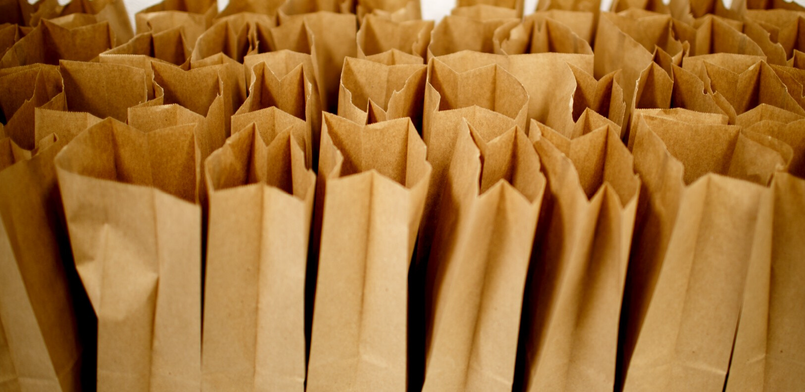 Closeup of several brown paper bags standing up