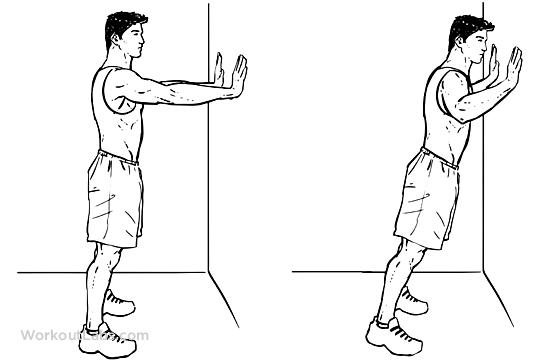 Wall Push-Ups / Pushups / Standing Press Ups – WorkoutLabs Exercise Guide
